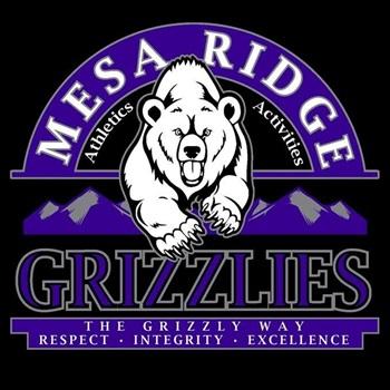 Mesa Ridge High School - Boys' JV Basketball