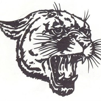 Coleman High School - JV Football