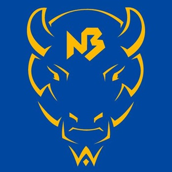 New Buffalo High School - Girls Varsity Basketball