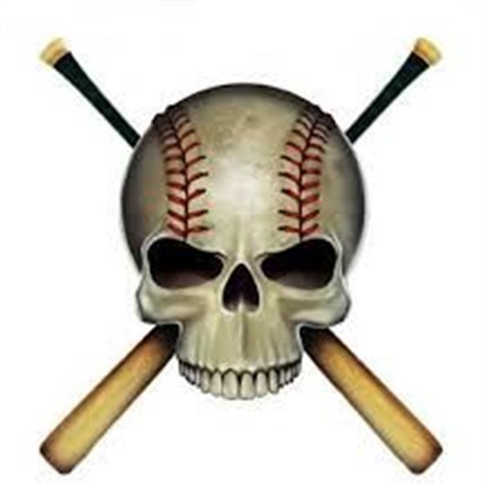 Boys Varsity Baseball - Plano Senior High School - Plano