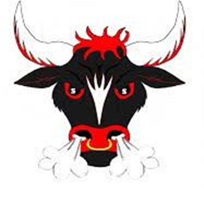 Image result for south stanly bulls