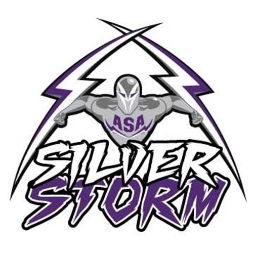 Asa College Miami Silver Storm