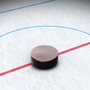 Wayne Chapman Youth Teams - Total Hockey Experience
