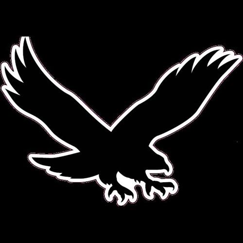 Waverly Shell-Rock High School - Boys Varsity Basketball