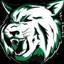 Image result for Houghton lake Bobcats