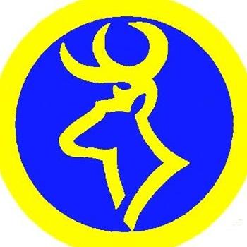 Roscommon High School - Girls Varsity Volleyball
