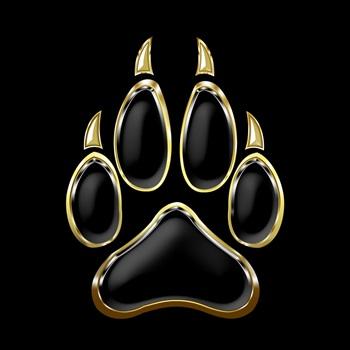 Calabasas High School - Calabasas Varsity Football
