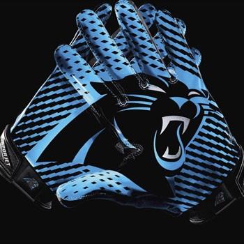 GFL - PW Panthers