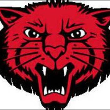 Mena High School - Boys Varsity Basketball