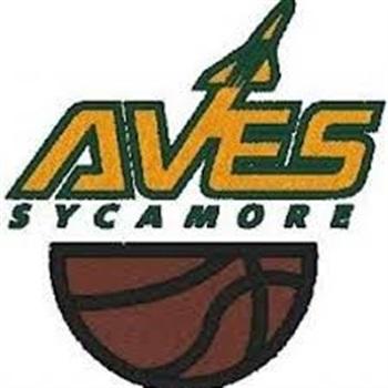Sycamore High School - Girls Basketball