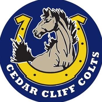 Cedar Cliff High School - Girls' Varsity Volleyball