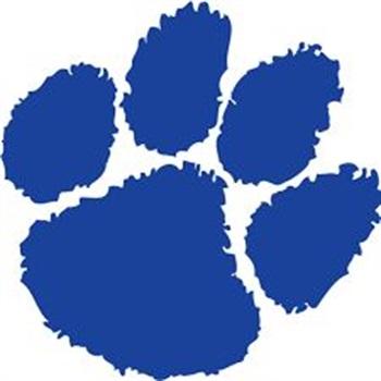 Wheeling High School - Wildcat Varsity Football