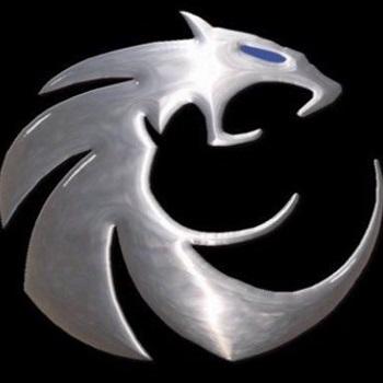 Guyer High School - Guyer Wildcats Varsity Football