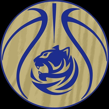 Bradwell Institute - Lady Tigers Varsity Basketball