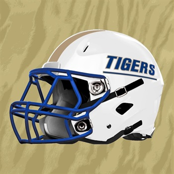 Bradwell Institute - Tigers Varsity Football