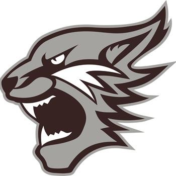 Palestine High School - Palestine Wildcat Varsity Football
