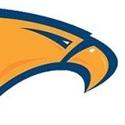 Briar Woods High School - Falcons Football