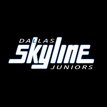 Dallas Skyline - 16 White