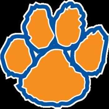 Racine Park Panthers  - Boys' Varsity Baseball