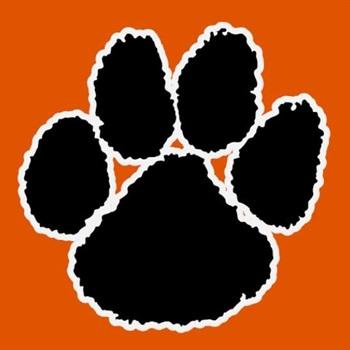 Brighton Bulldogs Football -  Varsity Orange