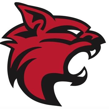 Lake View High School - Boys' Varsity Football