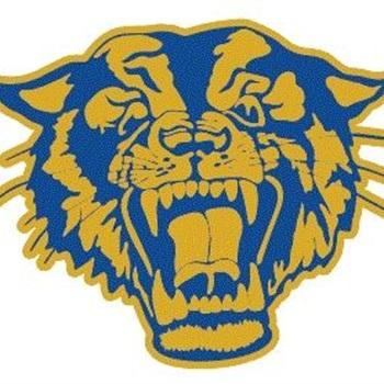 Raymondville High School - Raymondville Boys' Varsity Basketball