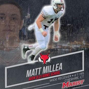 Matt Millea