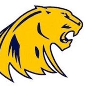 South Lyon Panthers Youth Football - South Lyon Panthers Varsity Gold