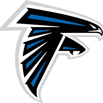 David Fischer Youth Teams - Falcons