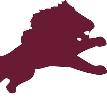 Brownwood High School - FRESHMEN LIONS