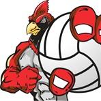 Grand Valley High School - Girls Varsity Volleyball