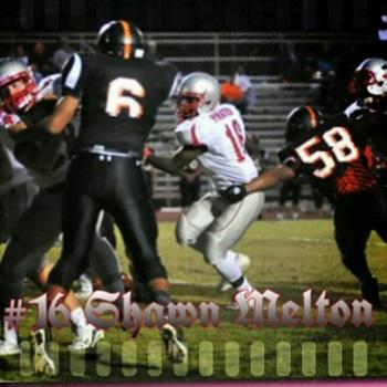 Shawn Melton