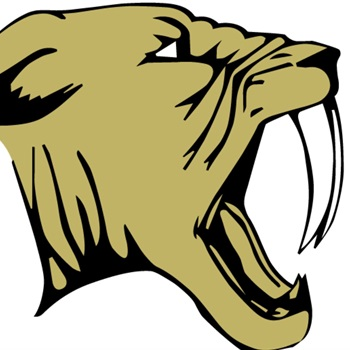Franklin Youth Football - Gold