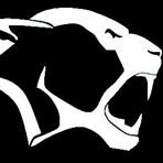 Berkshire High School - New York City Lions