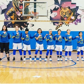 Valley View High School - Valley View Lady Tigers