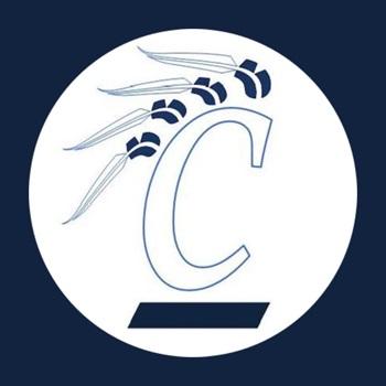 Clearwater High School - Clearwater High School Ladies Varsity Basketball