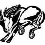 Muleshoe High School - Mules VBB (Old)
