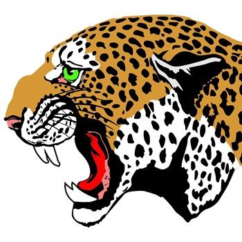 De Queen High School - Boys Varsity Football