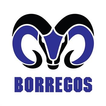 Instituto Tecnologico de Estudios Superiores de Monterrey - Campus Estado de Mexico - Borregos México