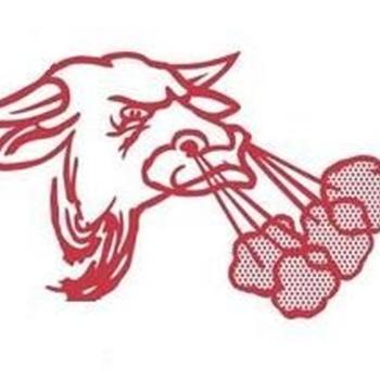 Bellville High School - Girls Varsity Basketball
