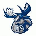 Winnipeg Jets - Manitoba Moose