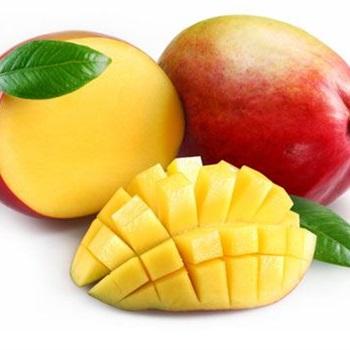 Mango Gay
