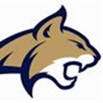 Hamilton High School - Hamilton Football