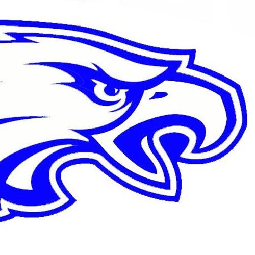 Obion County High School - Black Oak Eagles