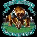 Aliso Niguel High School - Aliso Niguel Boys Varsity Football
