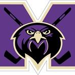 Monroe Township High School - Falcons