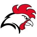Helsinki Roosters - Football