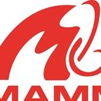 Muenster Mammuts  - Muenster Mammuts U19