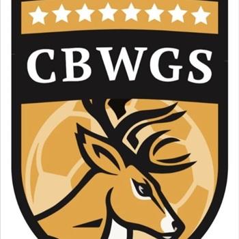 Central Bucks West High School - Girls Varsity Soccer