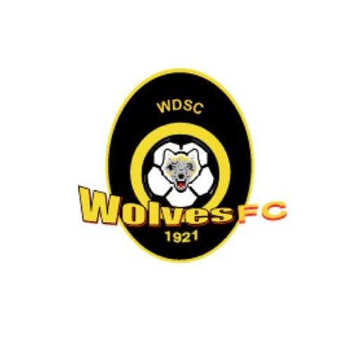 Wynnum Wolves FC - Wolves Hudl